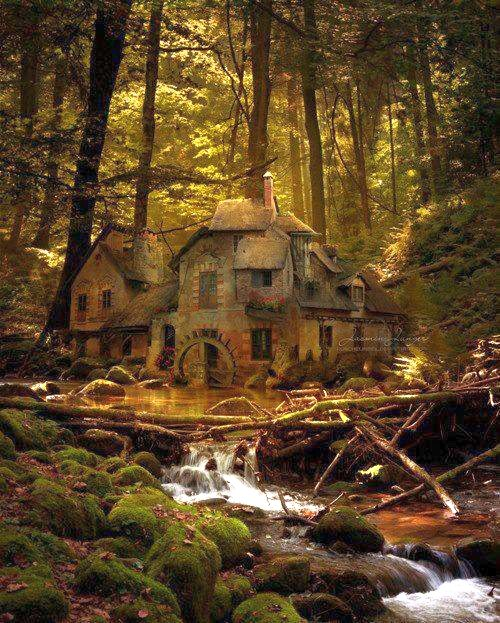 Old mill in the black forest of Germany