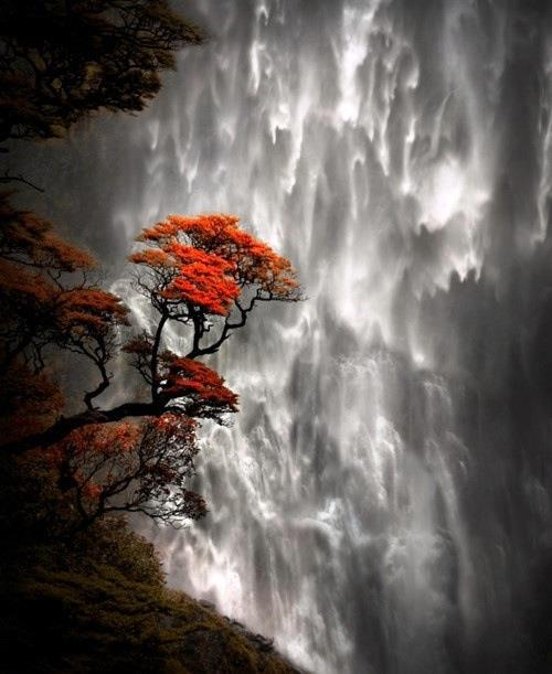 Devil Falls, South Island, NZ