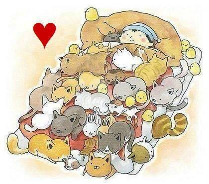 Cozy Pet Bed1