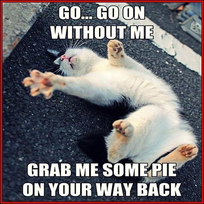 Grab Me Some Pie1