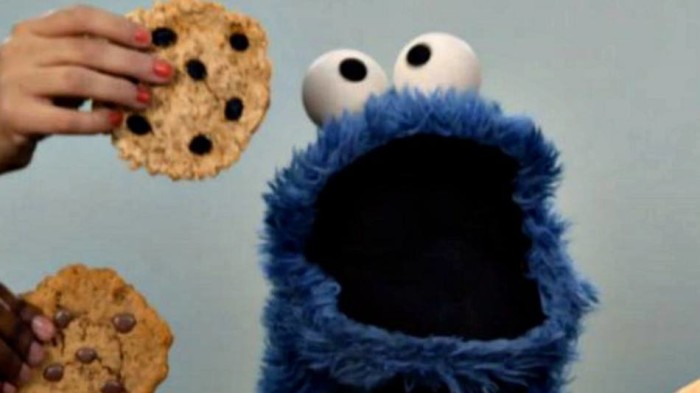 Cookie Monster5