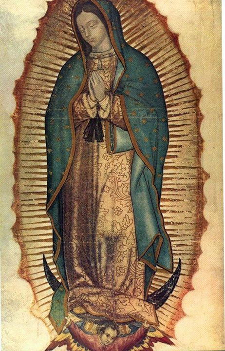 Our Lady of Guadeloupe1