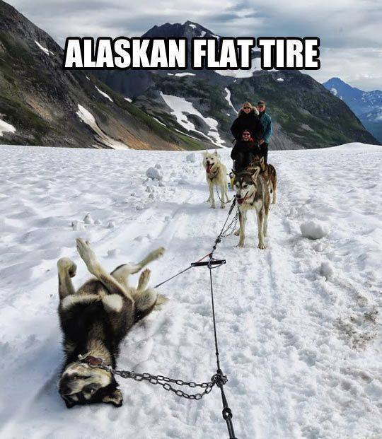Alaskan Flat Tire