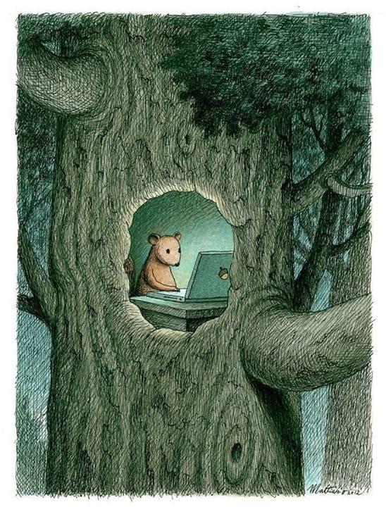 Squirrel Nut OS