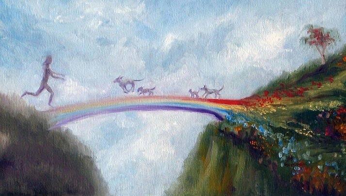 RainbowBridge2