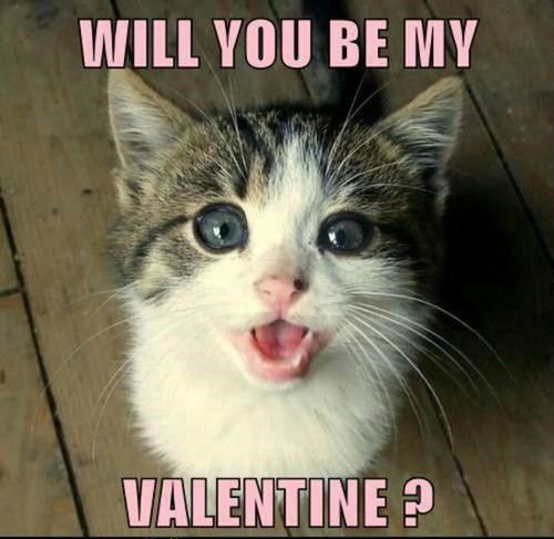 Will You Be My Valentine1