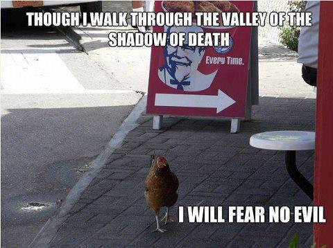 Fear No Evil1