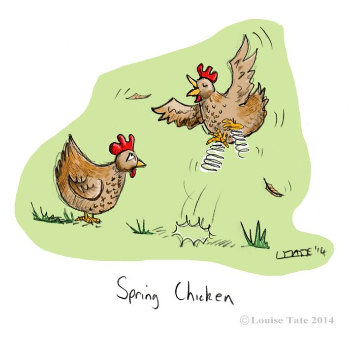 Spring Chickens2