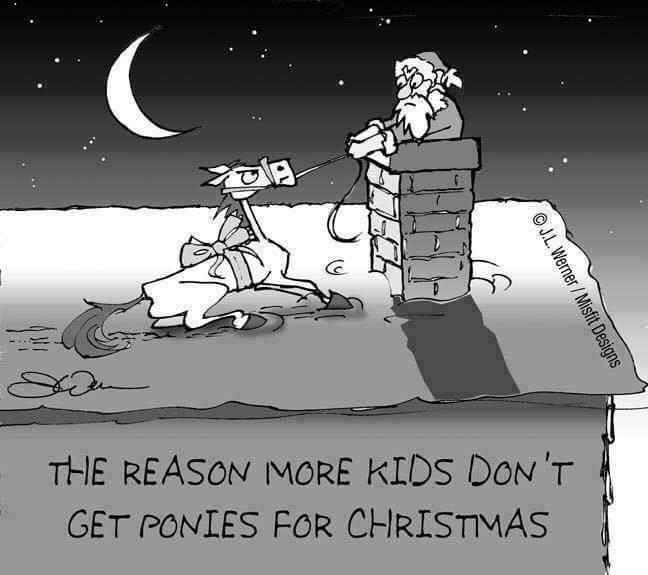 Christmas Ponies1