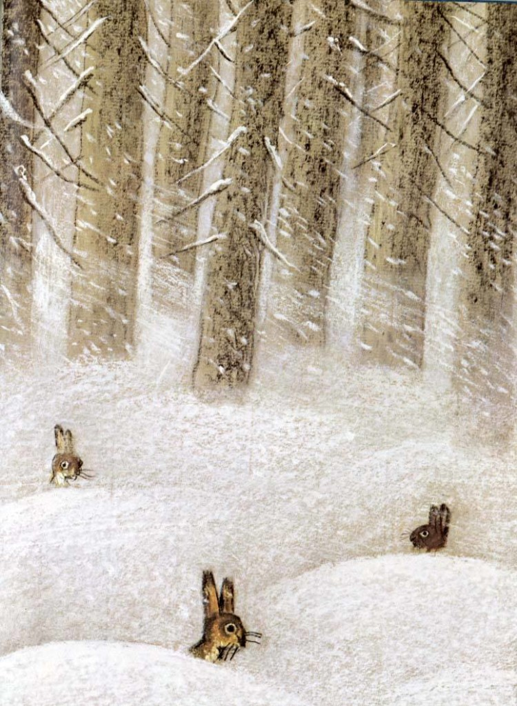 Rabbits In The Snow1
